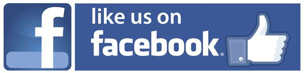 Stay informed of LSMS activities on Facebook
