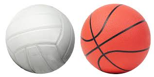 LSMS 2018-2019 7th Grade Volleyball and Boys Basketball Schedules