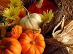 Thanksgiving Holiday: November 23-24